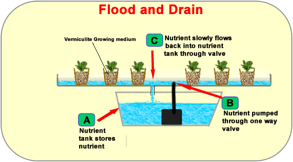 Flood and Drain - Hydroponic System