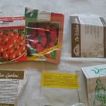 Hydroponics Diary: Choosing Tomato Varieties To Grow