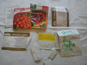 choosing tomato varieties ready for sowing